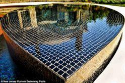 Swimming Pool Tile Designs
