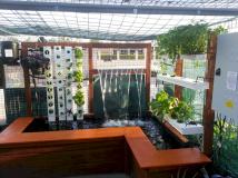 Aquarium Backyard Garden Ideas 2