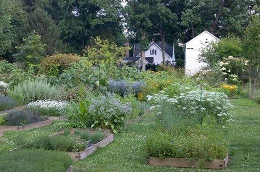 Back Yard Garden Potager