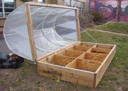 Cold Frame Gardening 5