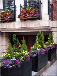 Fall Flower Container Garden Idea