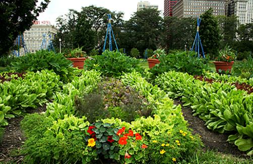 French Kitchen Garden Potager Design