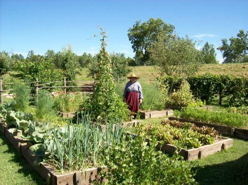 French Kitchen Garden Potager Ideas