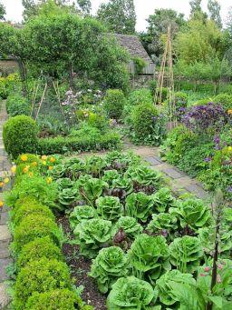 French Kitchen Garden Potager