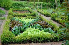French Potager Garden Design Ideas