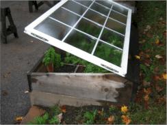 Greenhouse Raised Herb Gardens 5