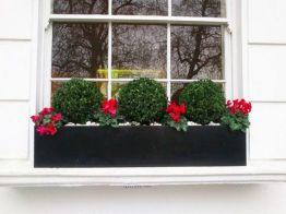Greenhouse Raised Herb Gardens 8