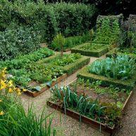 Medieval Vegetable Garden