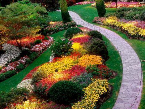 Bed Idea Flower Garden Designs Ideas