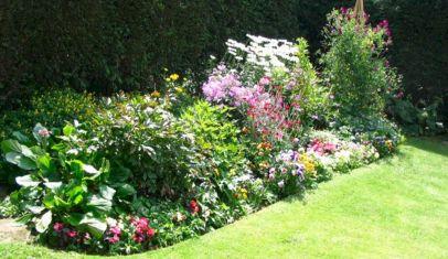Gardening Tips Flower Garden