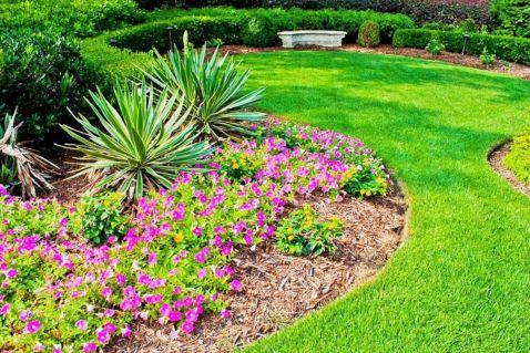 Simple Flower Garden Ideas
