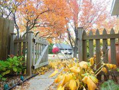 Beautiful Fall Garden Ideas For Awesome Fall Season 160