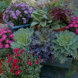 Beautiful Fall Garden Ideas For Awesome Fall Season 220
