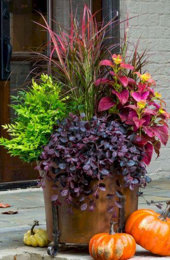 Beautiful Fall Garden Ideas For Awesome Fall Season 300