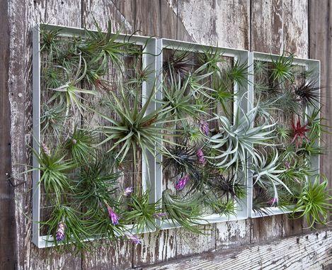 Awesome Vertical Garden Inspiration 117