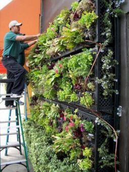 Awesome Vertical Garden Inspiration 118