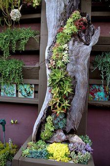 Awesome Vertical Garden Inspiration 146