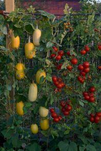 Awesome Vertical Garden Inspiration 16