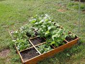 Awesomr Small Vegetable Garden Ideas