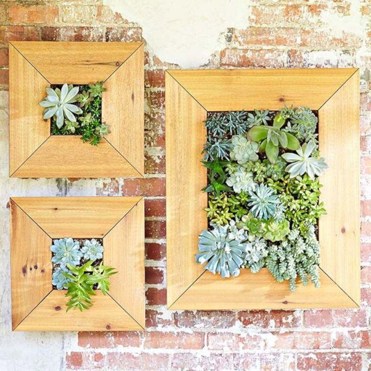 DIY Succulent Wall Planters