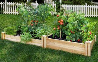 Small Vegetable Garden Ideas Design