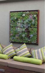 Succulent Living Wall Art