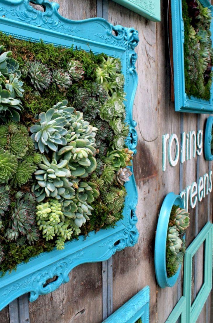 25+ Wonderful Diy Succulent Wall Art As Beautiful ...