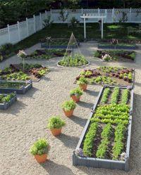 Backyard Vegetable Garden Design Ideas  DECOREDO