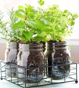 DIY Indoor Herb Garden Design Idea