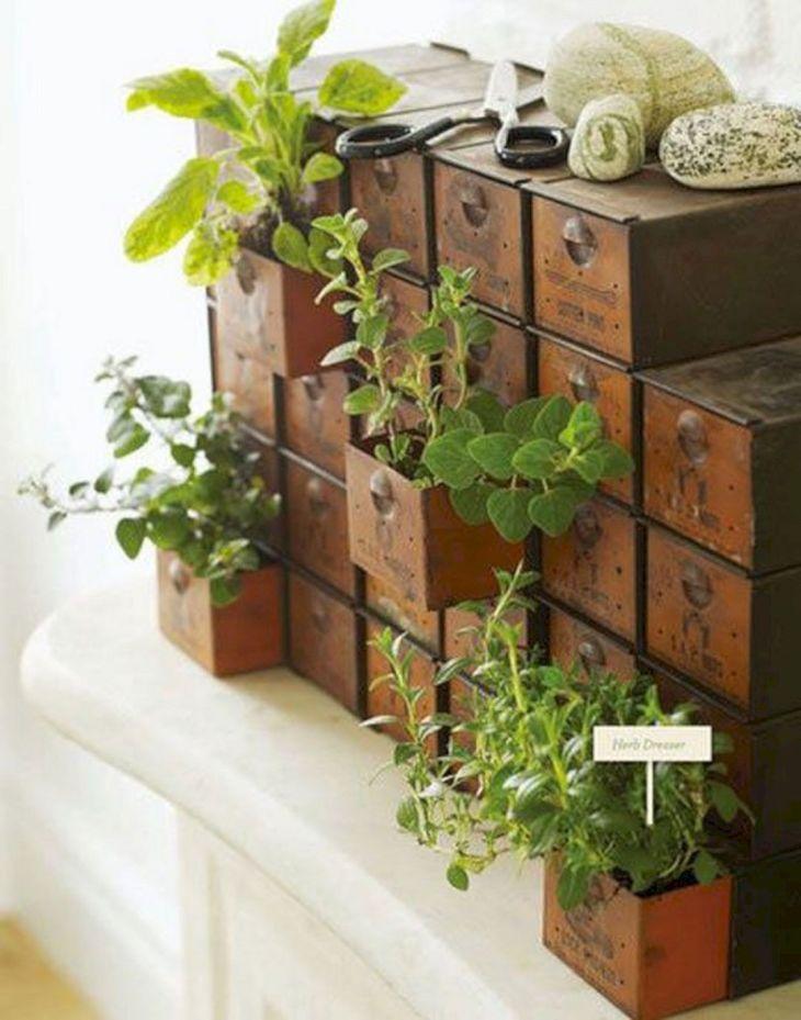 DIY Indoor Herb Garden Idea