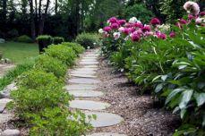Peony Garden Design Ideas