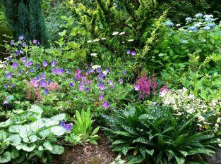 Perennial Shade Garden Design
