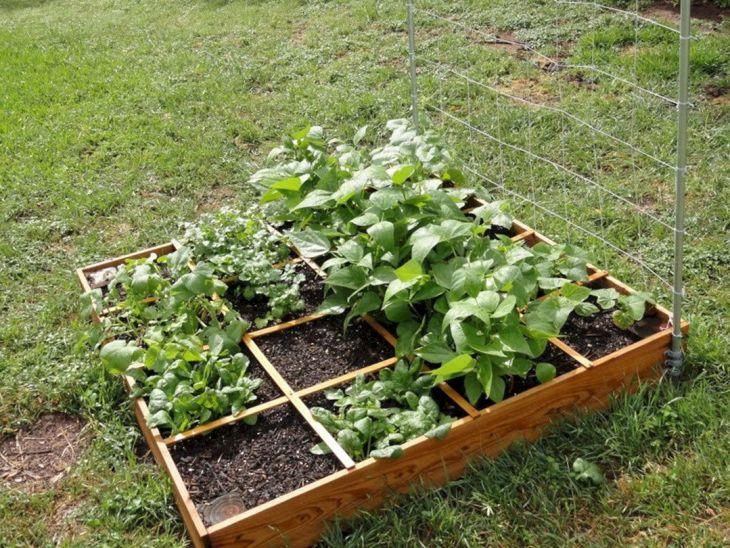 Small Vegetables Garden Design Idea