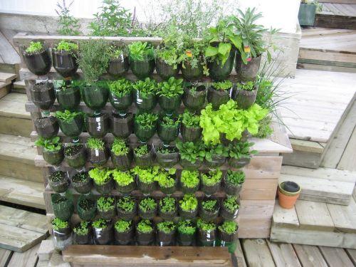 Vertical Vegetable Garden Ideas
