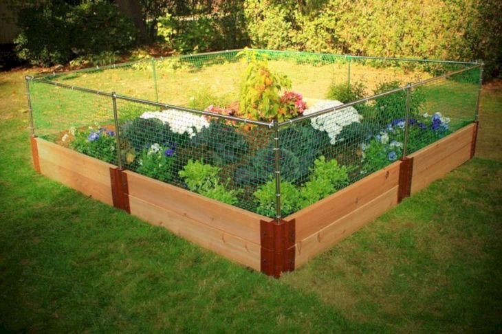 Backyard Vegetable Garden Fence