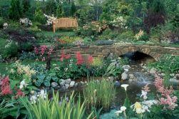 Beautiful Flower Garden with Waterfall