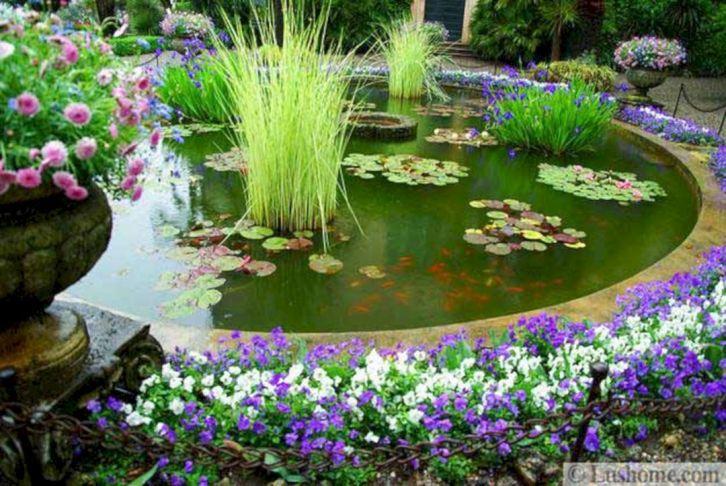Beautiful Garden with Koi Pond