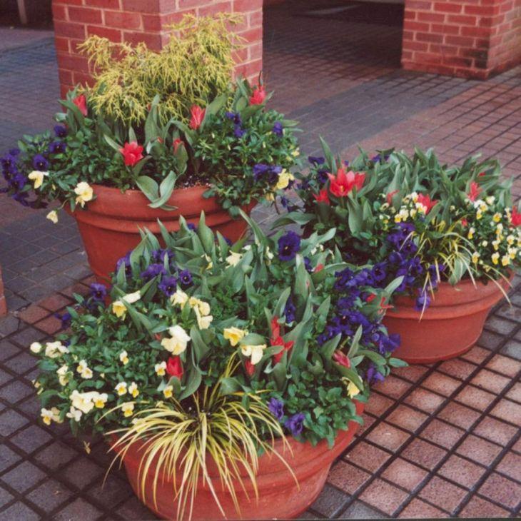 Beautiful Container Gardening Ideas: Best Container Gardening Design Flowers Ideas: 25