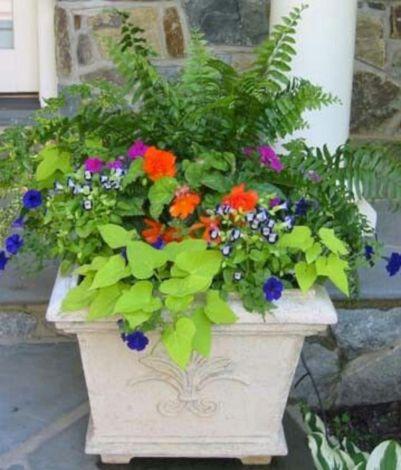 Container Flower Pot Arrangement Ideas