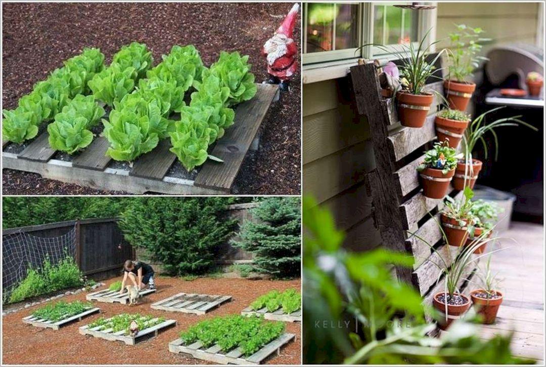 DIY Garden Project