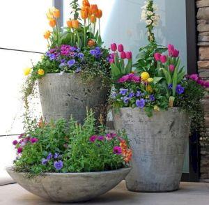 Spring Flower Planter Ideas