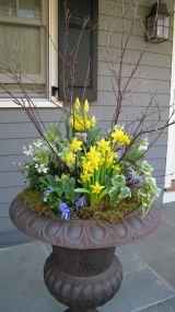 Spring Outdoor Flower Pot Arrangement Ideas
