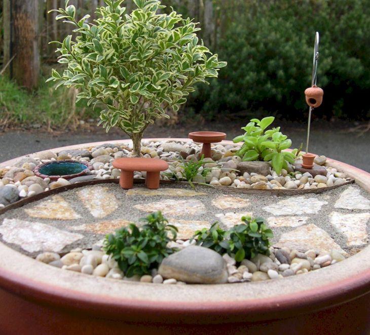 Best 25 Indoor Fairy Garden Ideas For Home Looks More