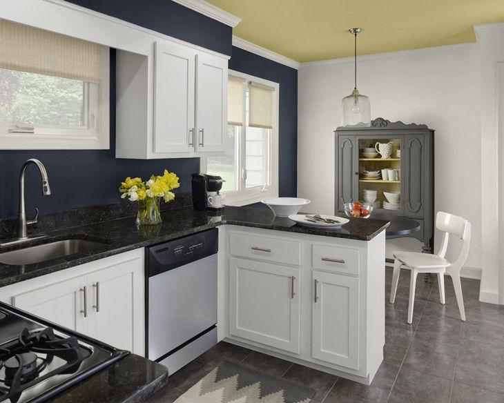 Kitchen Color Schemes Ideas 3