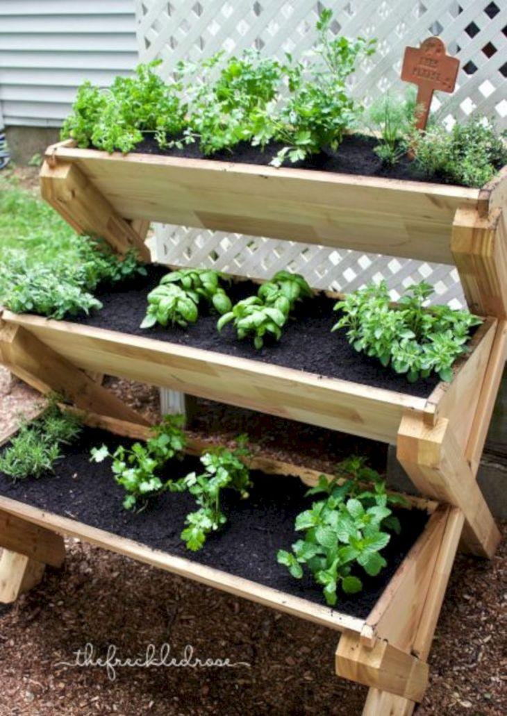 Herb Garden Ideas 13
