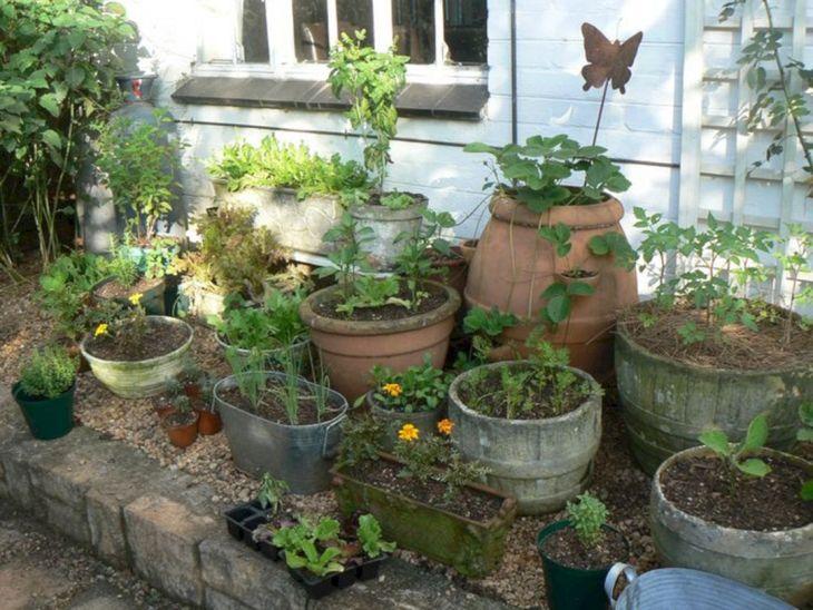 Herb Garden Ideas 15