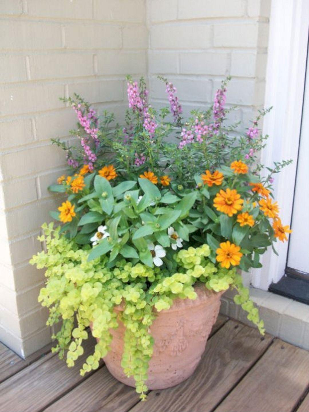 Wonderful Container Garden Design Ideas Decoredo