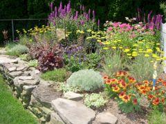 Small Perennial Garden Designs 10