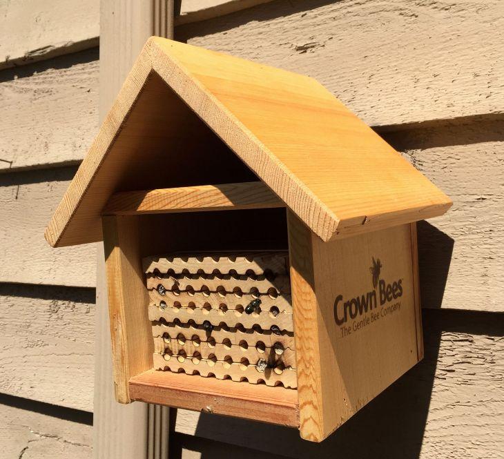 DIY Mason Bee House Design 5