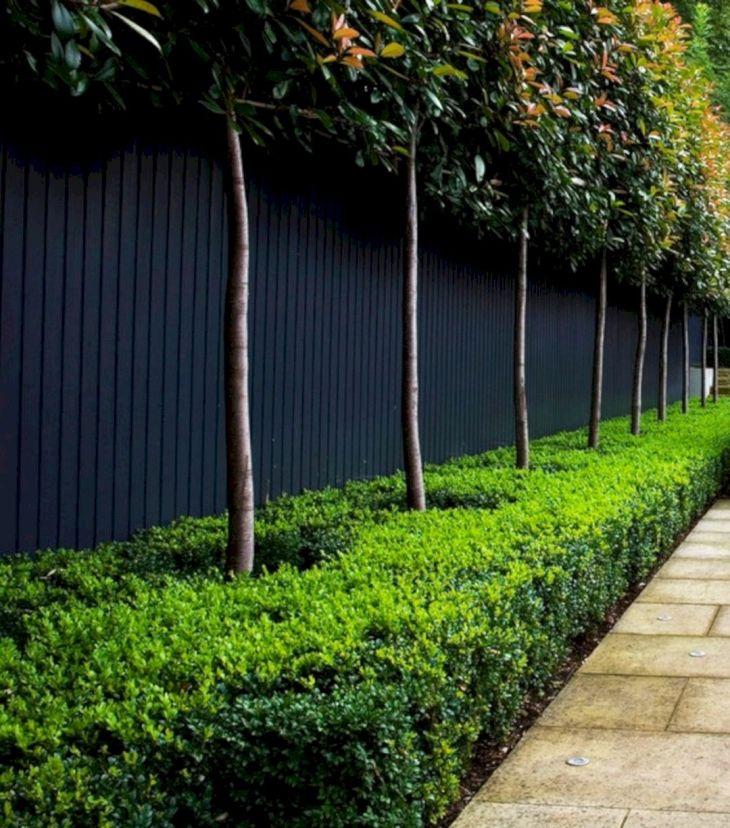 Black Garden Fences Design 2
